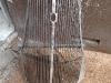 2-grillen-avspolad-efter-1-dygn-i60-grader-strippall-bad